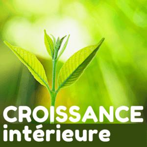 Croissance intérieure